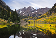 Bells Photos - Reflections and Aspen Trees by Tim Reaves