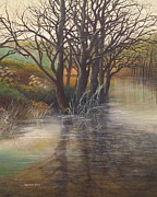 Flooding Painting Prints - Reflections Chadwick Lakes Rabat Malta Print by Raymond Frans