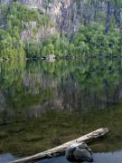 Adirondack Park Art - Reflections in Chapel Pond Adirondack Park New York by Brendan Reals