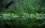 Norway Originals - Reflections in Green by Terence Davis