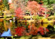 Fall Foliage Photos - Reflections in NH Pond by Janice Paige Chow