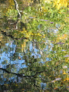 Water Reflections Photos - Reflections in Paradise 2 by Anita Burgermeister