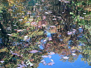 Water Reflections Photos - Reflections in Paradise 3 by Anita Burgermeister