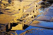 Puddle Prints - Reflections in the Paving Stones of the Piazza della Signoria Print by Jeremy Woodhouse