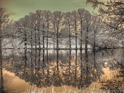 Infrared Art - Reflections by Jane Linders