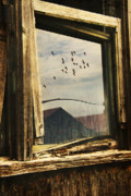 Window Digital Art Prints - Reflections Print by Nancy  Coelho