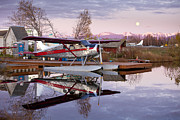 Floats Photos - Reflections of a Beaver by Tim Grams