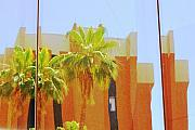 Asu Framed Prints - Reflections of ASU 15 Framed Print by Richard Henne