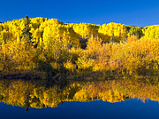 Pauls Colorado Photography Prints - Reflections of Autumn Print by Paul Gana
