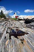 Reflections Of Pemaquid Print by Brenda Giasson