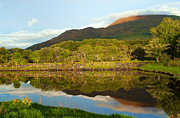 Bel Menpes - Reflections on Loch Etive