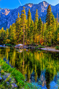 Eyal Prints - Reflections on the Merced river Yosemite National Park Print by Eyal Nahmias