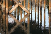 Reflections In Water Prints - Reflections under the Dock Print by Carol Groenen