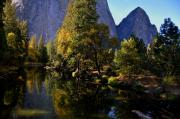 Yosemite National Park Digital Art - Reflections Yosemite by Vijay Sharon Govender