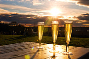 Winery Photography Posters - Refreshing Sunset Poster by Dolly Genannt