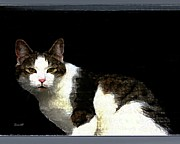 Felines Dale Ford Prints - Reggie in Window Print by Dale   Ford