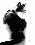Felines Dale Ford Prints - Reggie Turning Print by Dale   Ford