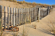 Sand Fences Acrylic Prints - Rehoboth Beach Acrylic Print by JC Findley