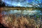 LAWRENCE CHRISTOPHER - REIFEL IN WINTER 1