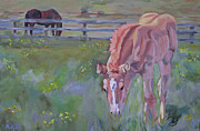 Filly Paintings - Reins Playground by Anne West
