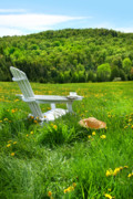 Country Cottage Digital Art Posters - Relaxing on a summer chair in a field of tall grass  Poster by Sandra Cunningham