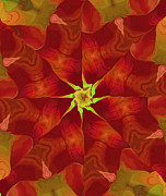 Kaleidoscope Art - Release of The Heart by Deborah Benoit