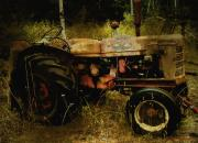 Machinery Digital Art Posters - Relic in the Field Poster by RC DeWinter