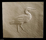 Suhas Tavkar Framed Prints - Relief bird on paper Framed Print by Suhas Tavkar