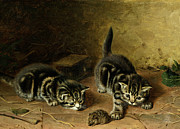 Mice Paintings - Reluctant Playmate by Horatio Henry Couldery