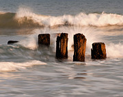 Pilings Prints - Remains Of A Pier Print by Donna Eaton