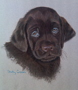 Lab Pastels - Remi by Shelly Crippen