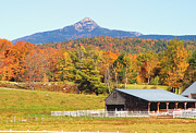 Mt Chocorua Posters - Remick Autumn Poster by Larry Landolfi