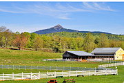 Mt Chocorua Posters - Remick Farm Spring Poster by Larry Landolfi