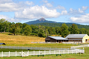 Mt Chocorua Posters - Remick Farm Summer Poster by Larry Landolfi