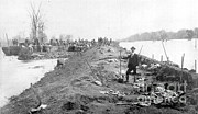 Flooding Photos - Repairing Mississippi Levee, 1903 by Science Source
