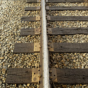 Railroad Spikes Art - Repetitive by Lynn Palmer