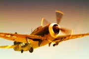 Republic P-47 Thunderbolt 2011 Chino Air Show Print by Gus McCrea