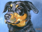 Black Dog Print Posters - Rescue in Blue Poster by Susan A Becker