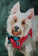 Donna Pierce-clark Art - Rescue Westie Carrie by Donna Pierce-Clark