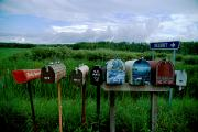 Voyageurs Metal Prints - Resident Mailboxes, Voyageurs N.p Metal Print by Richard Olsenius