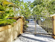 Palmetto Plants Photos - Residential Gated Entrance by Skip Nall