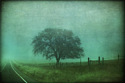 Fog Digital Art Prints - Resolution Print by Laurie Search