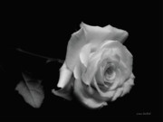 Donna Blackhall - Rest In Peace