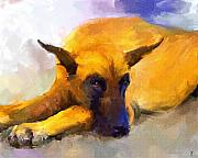 Great Dane Paintings - Resting by Jai Johnson
