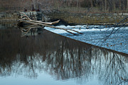 Blackstone River Prints - Resting Limbs Print by Barry Doherty