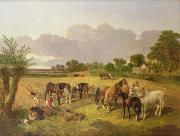 Plough Prints - Resting Plough Team Print by John Frederick Herring Snr
