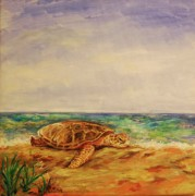 Hawaii Sea Turtle Paintings - Resting Sea Turtle by Danielle Hacker