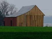 Foggy Day Originals - Restored Barn by Trish Clark