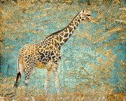 Fauna Metal Prints - Reticulated Metal Print by Arne Hansen