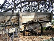 Farm Wagon Prints - Retired Farm Wagon Print by Will Borden